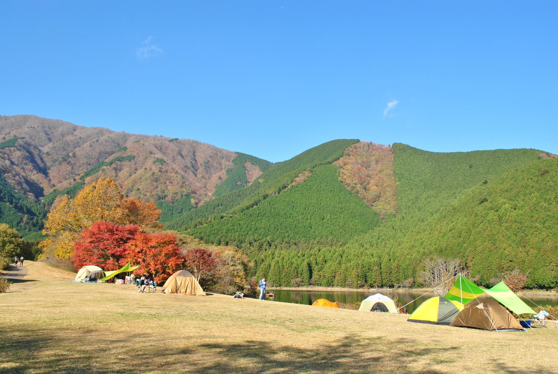 キャンプ場イメージ画像